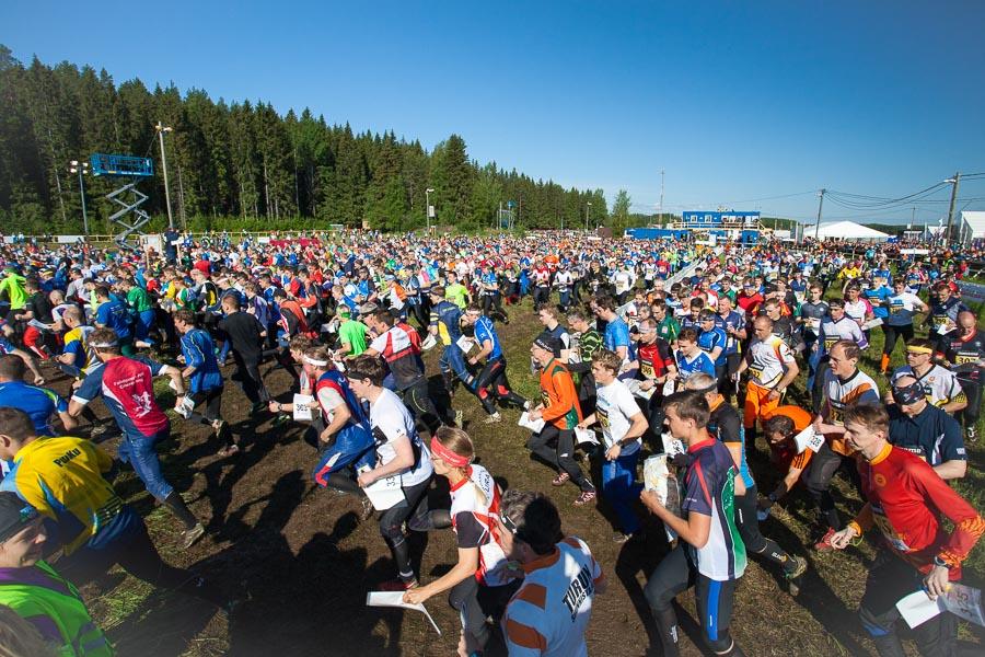 Vaan nyt! Ankkureiden yhteislähtö on viimeinen kertarynnistys metsään Kuopio-Jukolassa 2014.